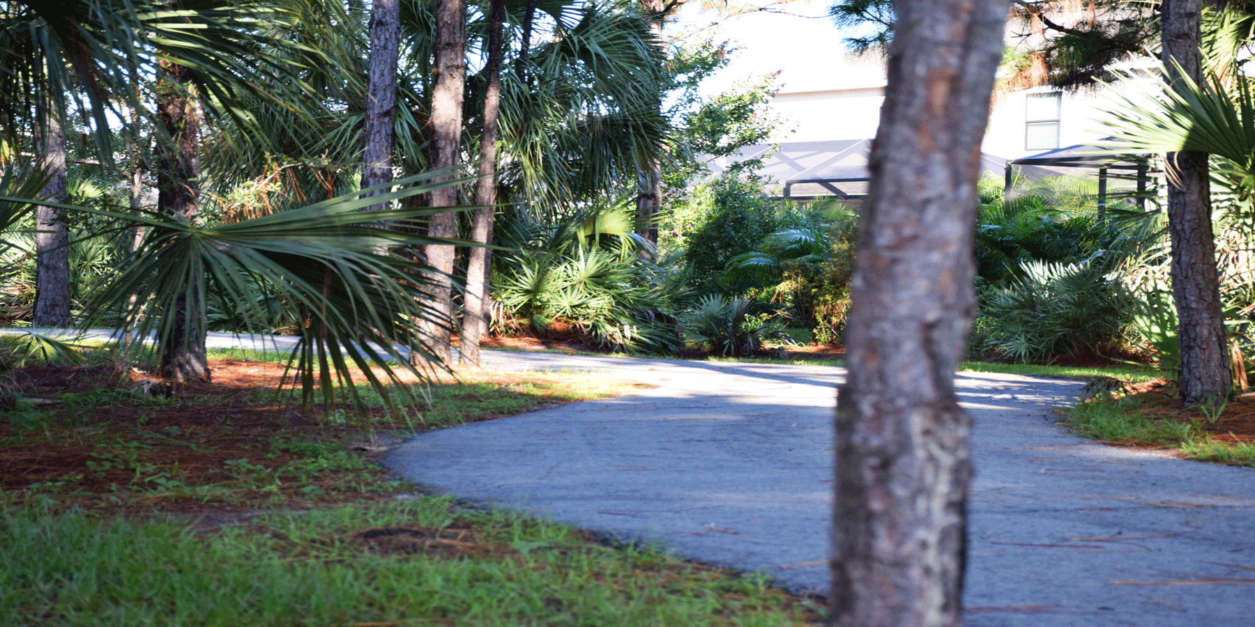 Strom Park Multi-Use trails