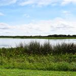 Viera Wetlands Pond